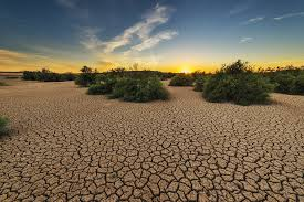 The ground of California cracks as a result of the drought.