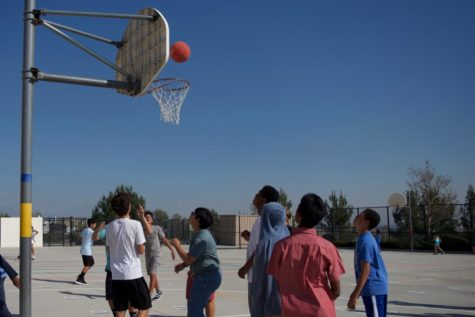 DCIS Intramural Sports
