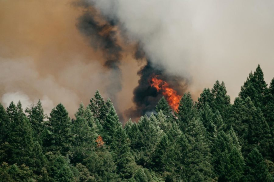 California Wildfire: Death Toll Rises, Several Missing – The