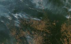 Amazon Rainforest on Fire!