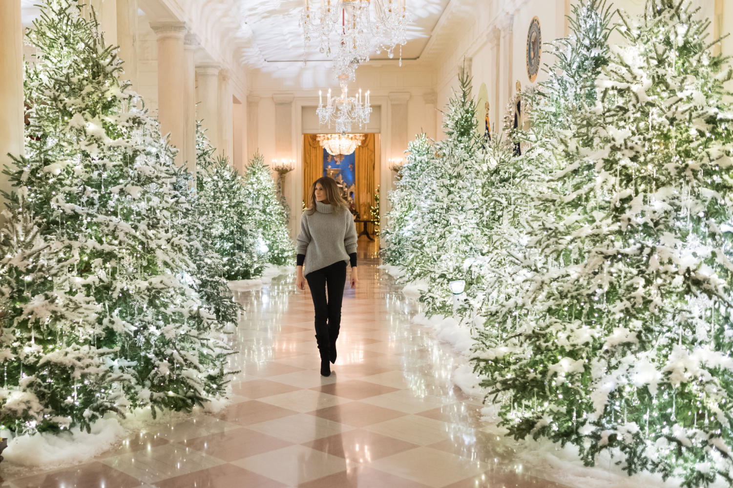 For the annual White House Christmas, First Lady Melania Trump went all out on decorations.