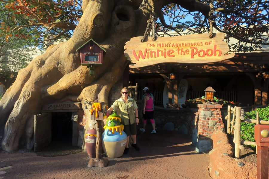 The Winnie the Pooh house has gotten many Disney fans crazy trying to find a spot!